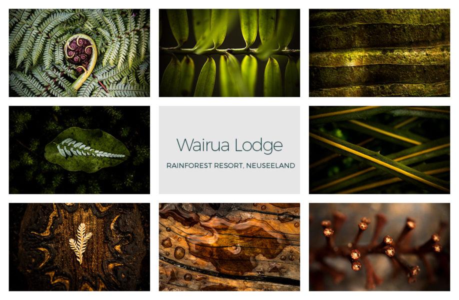 Kunst vom Ort für den Ort, Detailkunst im Regenwald, Wairua Lodge, Coromandel, Whitianga, NZ, Neuseeland