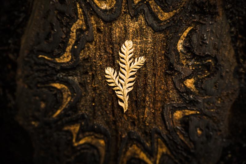 Detail-Fotografie von Elias Branch.